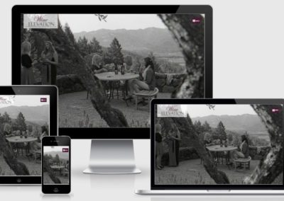 WordPress Website for Winery Business